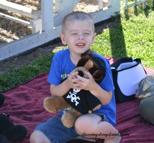 Stuffed Animal Picnic Day