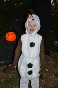 Last years Olaf costume