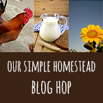 blog-hop-button1
