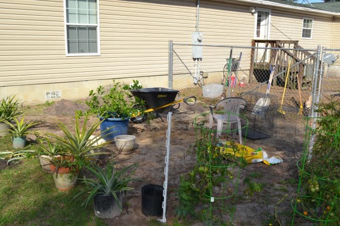 Spring Garden~Growing a large family